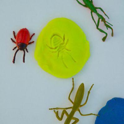 8 Bug Activities For Kids