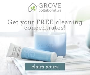 Green Cleaning On The Cheap