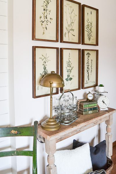 Framed botanical prints are a beautiful addition to any style decor. They add a touch of natural decor wherever you hang them. The entry, bathroom, dining room and/or living room will all come alive with a gallery wall of framed botanical prints.