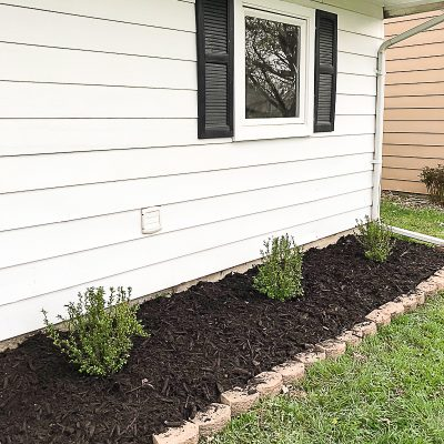 Low Growing Shrubs To Add Curb Appeal At The Flip