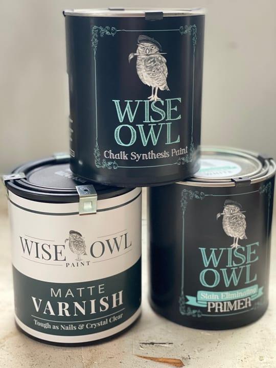 wise owl paints